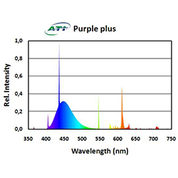 ATI 54W Purple Plus