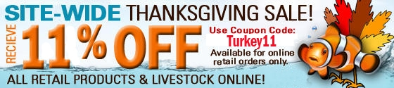 turkey2011 - Premium Aquatics Annual Thanksgiving Sale!