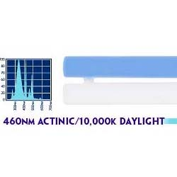 96 watt SmartPaq 10,000K Daylight/460 nm Actinic