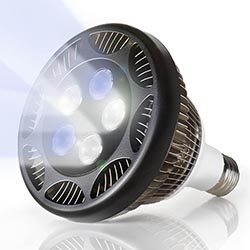 PAR38 21 watt LED Aquarium Lamp, 12,000K
